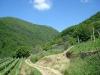 sentiero-cascate